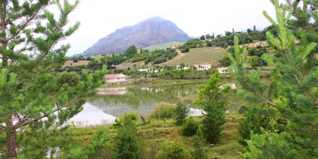 Şebinkarahisar